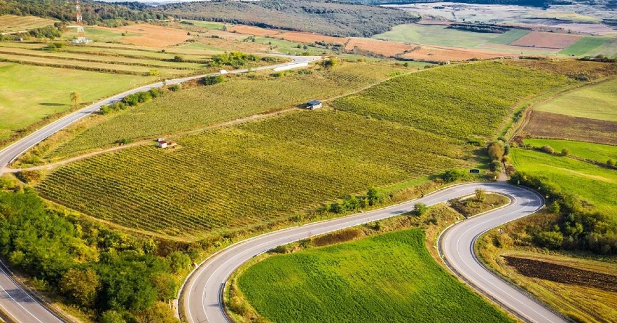 Casa de vinuri Zaig și-a dublat veniturile anul trecut, iar pentru 2021 estimează o creștere de 40-50%