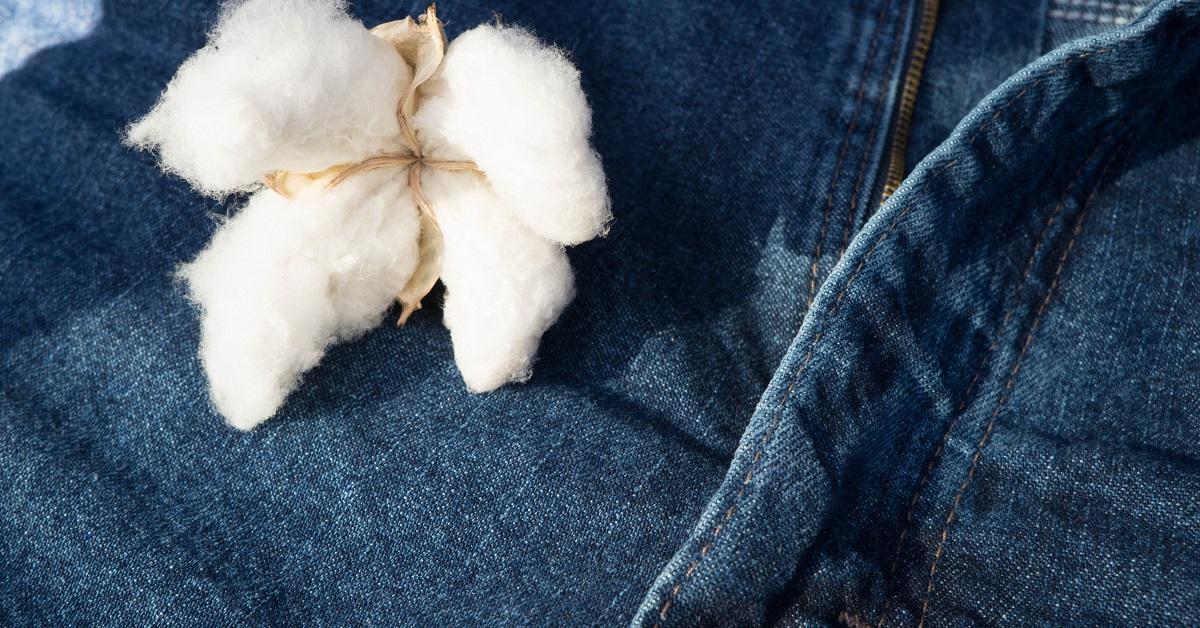 GLAMI lansează glami.eco, motor de căutare pentru haine din materiale sustenabile