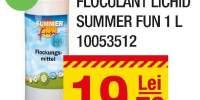 Floculant lichid Summer Fun