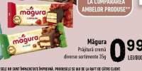 Prajitura crema Magura