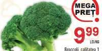 Broccoli, calitatea I, Italia/Spania